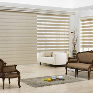 Window-blinds_philppines_window-blinds-philippines_window-shade_dual-shade_reve_cheap-window-blinds_quality-window-blinds_ph