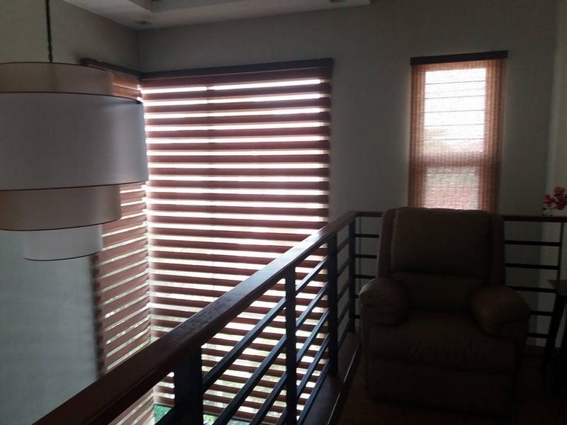 vista window blinds